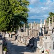 Carcassone Graveyard walking paths — Stock Photo #38676523