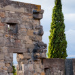 Detail of wall from Carcassonne medieval city — Stock Photo