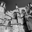 Stock Photo: BarcelonCathedral SantEulaliback  walls and tower details