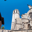 Stock Photo: BarcelonCathedral SantEulaliback  walls tower and lantern