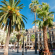 Stock Photo: Palms in PlazReial at Barcelona