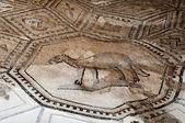 Animal mosaics at Aquileia Basilica — ストック写真