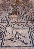 Bird and symbol mosaics inside Basilica di Aquileia — 图库照片
