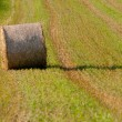 Hay rolls - Hay roll on field horizontal — Stock Photo