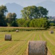 Hay rolls and mountains background — Stock Photo