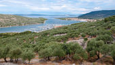 Panoramic view of Cres marina and town  — Stock Photo