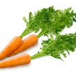 Carrots Isolated on white — Stock Photo #18162063