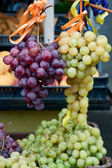Bunches of grapes — 图库照片