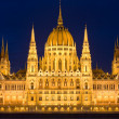 High detail shot of the Hungarian parliament. — Stock Photo