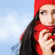 Brunette beauty in winter fashion. — Stock Photo #17447629