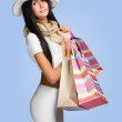 Luxury shopper. — Stock Photo #19038009