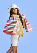 Elegant young woman shopper. — Stock Photo