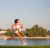 Perfecte training. — Stockfoto