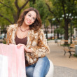 Young brunette shopping woman. — Stock Photo #33979893