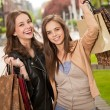 Shopping spree. — Stock Photo #45094001