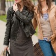 Girlfriends go shopping. — Stock Photo #45094085