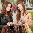 Shopping tour. — Stock Photo #50433095