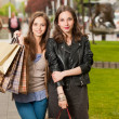 Fashionable shopping beauties. — Stock Photo #50433105