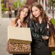 Shopping tour. — Foto Stock