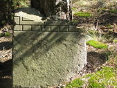 Old gravestone in the forest — Stock Photo