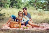 Leende par har resten i trä på picknick — Stockfoto