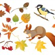 Set of isolated autumn forest leafs and little birds and animals — Imagen vectorial