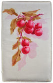 Cherry branch - Aquarell painting on fabric background — Stock Photo