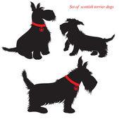 Uppsättning av skotsk terrier hundar silhuetter — Stockvektor