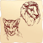 Hand drawn ink portrait sketch of lion and cheetah heads — Stock Vector
