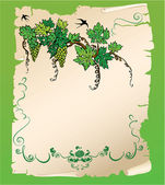 Hand drawn Branch of grapes on old paper scroll. Design for menu — Stock Vector
