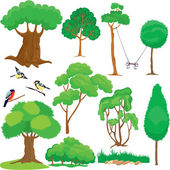 Set of trees, bushes and birds isolated on white background. — Stock Vector