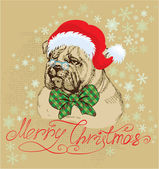 Vintage Christmas card - bulldog wearing Santa Claus hat - hand — Stock Vector
