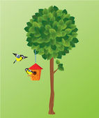 Illustration of green tree, tit birds and nesting box. — Stock Vector