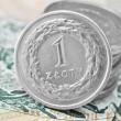 Stock Photo: Polish zloty