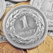 Polish zloty — Stock Photo #33376991