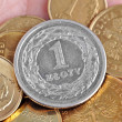 Polish zloty — Stock Photo