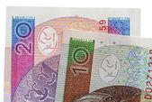 Polacco zloty-nuove banconote — Foto Stock
