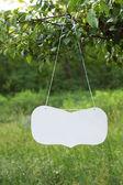 Panneau blanc sur l'arbre — Photo