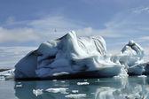 Icebergs na lagoa de gelo jokulsarlon. — Foto Stock
