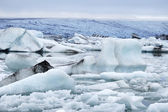 Melting icebergs in Jokulsarlon lagoon. — Stock Photo
