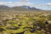 Snaefell wulkan 1833 m. wysokości, islandia — Zdjęcie stockowe