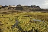 Horskou krajinu na islandu — Stock fotografie