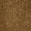 Brown fabric — Stock Photo #12232121
