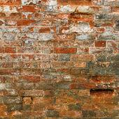 旧墙 — 图库照片