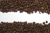 Coffee beans two lines texture — Stock Photo