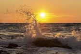 Wave at sunset — Foto de Stock