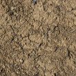 Ground texture - Stock Photo