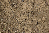 Ground texture — Stock Photo