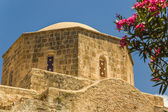 Mosque in Paphis, Cyprucs. Detail — Stock Photo