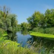 Stock Photo: View on river ,